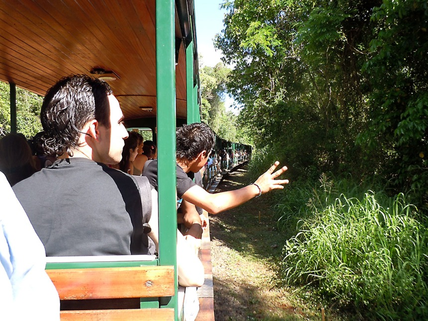 Ecological Jungle Train - Iguazu National Park, Argentina