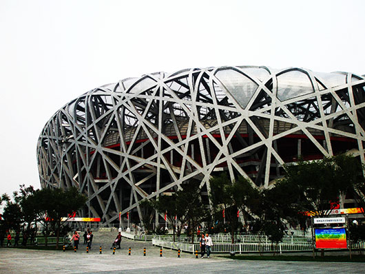 The bird s nest the urge to wander for The nest beijing