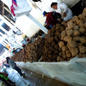 Some of the over 3000 varieties of potatoes on display in the market