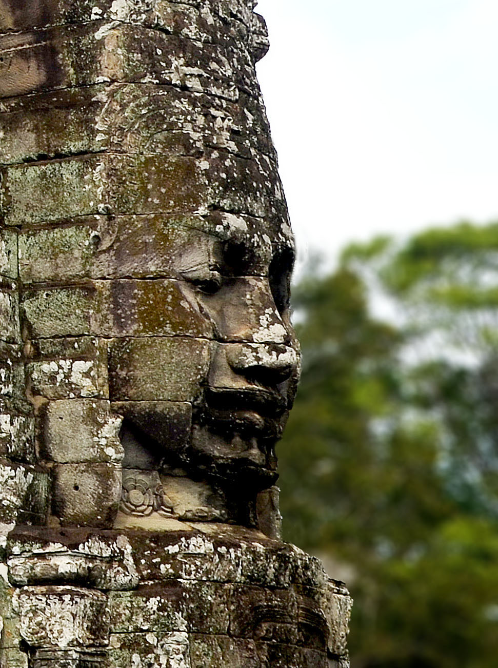 The Bayon face in profile