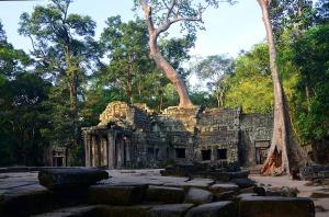 Ta Phrom - Ancestor Brahma Temple