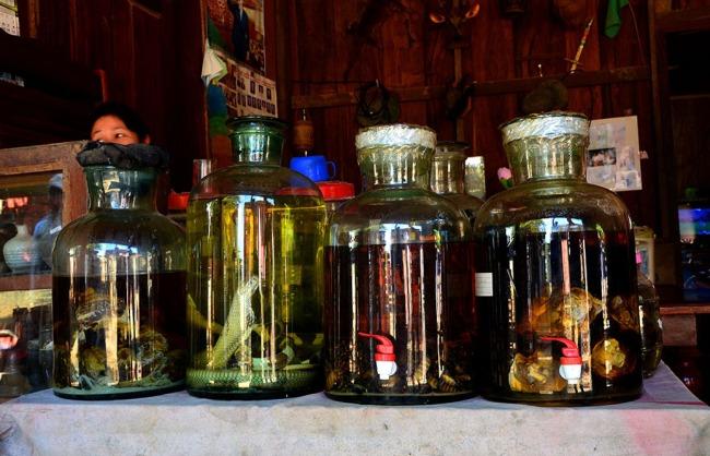 Snake Wine - Luang Prbang, Laos