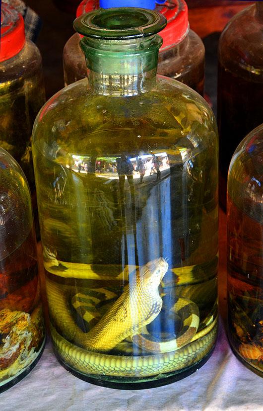 Snake Whisky - Weaving Village, Luang Prabang