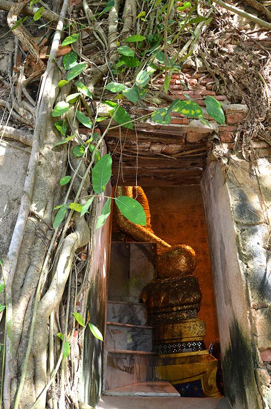 Budha - Wat Bang Kung - Bangkok