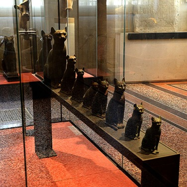 Cats - Musee du Louvre