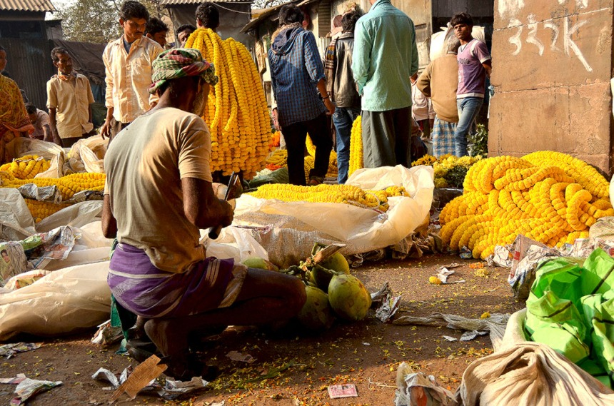 Tender Coconut seller - Flower Bazaar Calcutta