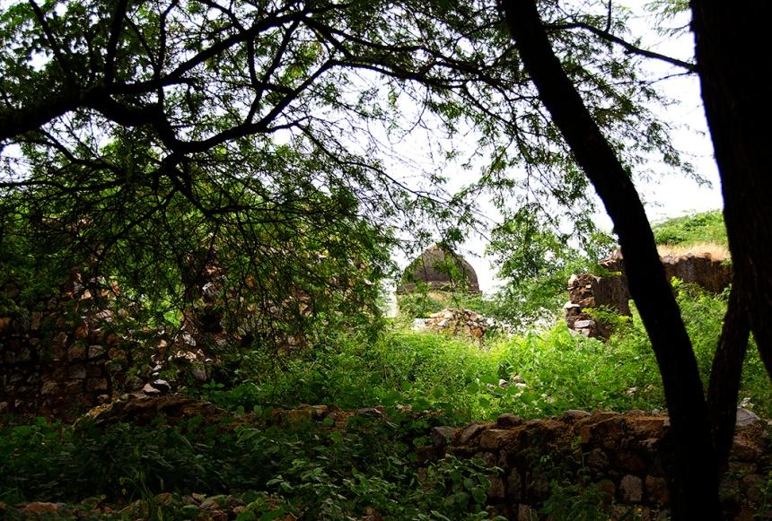 Mehrauli arcaeological park, Delhi
