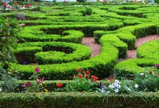 Topiary - Musée Carnavalet, Paris