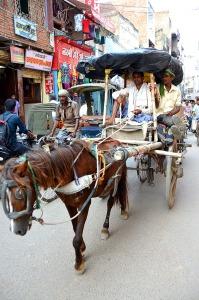 Horse cart - Jaunpur
