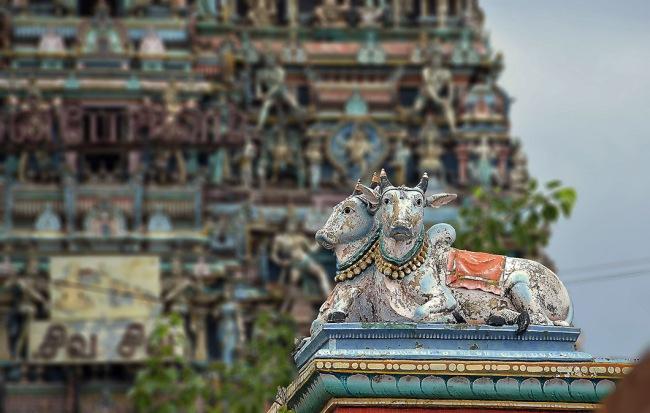 Kapaleeswarar temple, Chennai