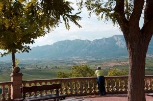 Rioja Alavesa, Spain