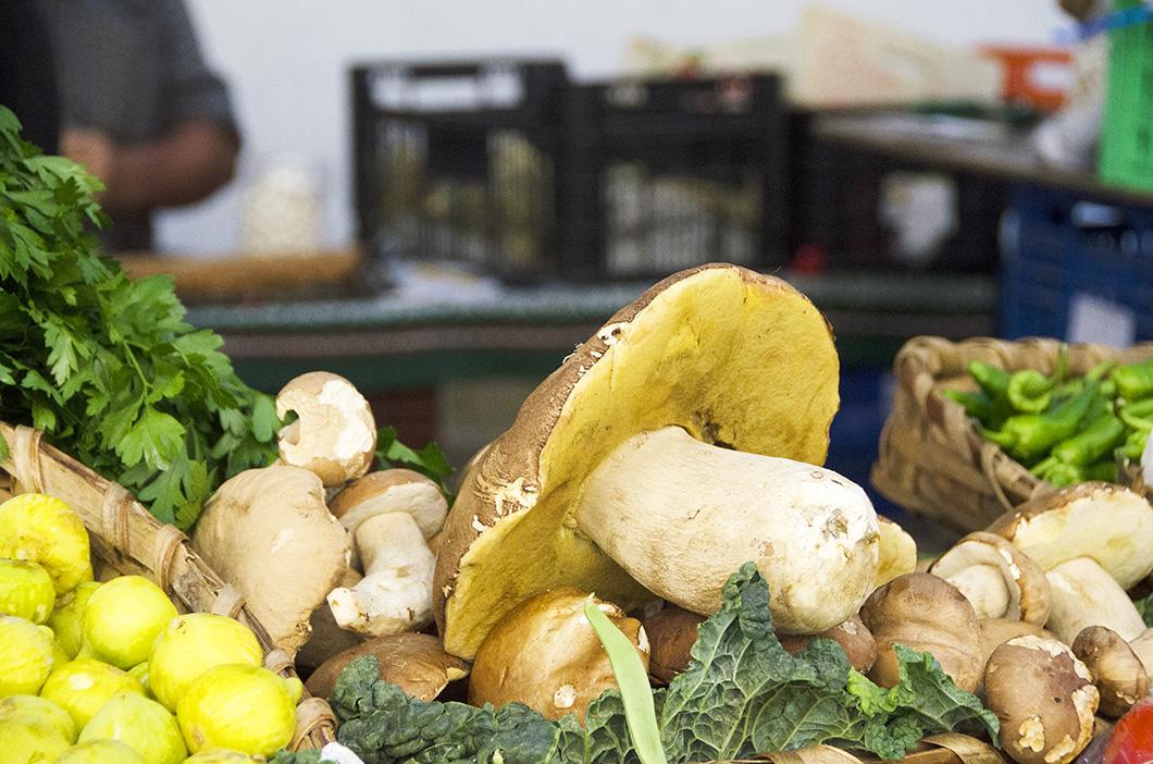 A single gigantic mushroom with other vegetables in the mercado, San Sebastian