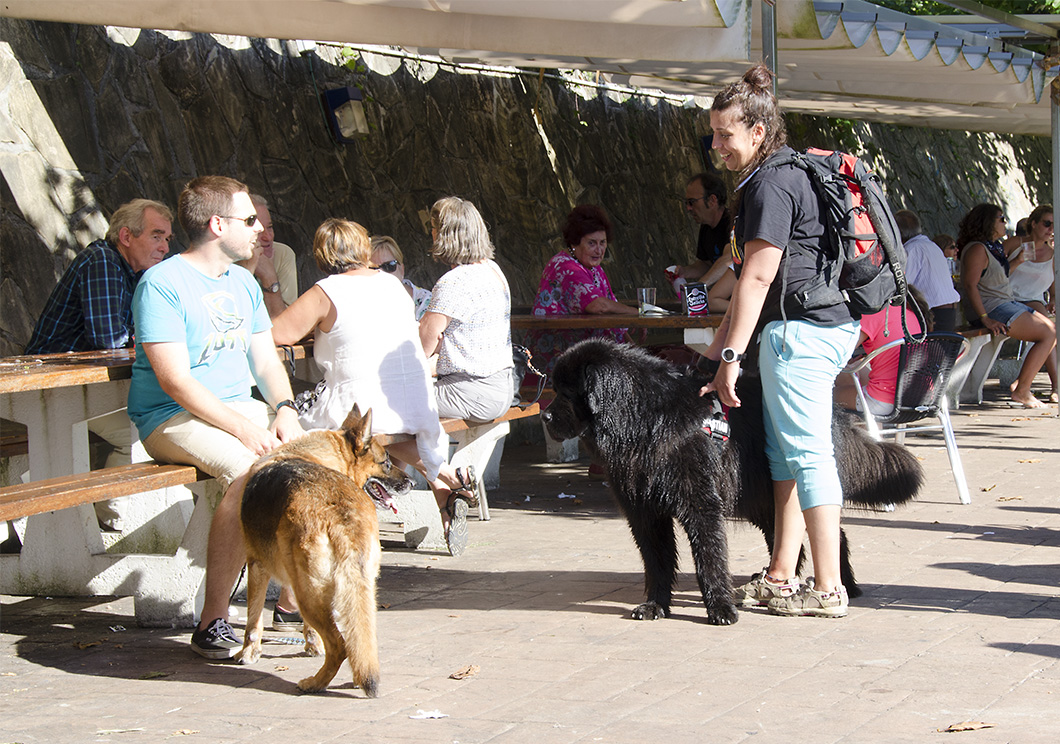People in restaurants along the waterfront of Pasai San Juan (Donibane). In the foreground a man seated on a bench holds a German Shepherd on a leash while conversing with a girl who has a huge black Newfoundland beside her.