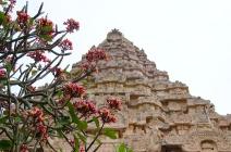 Vimana - Gangaikonda Cholapuram
