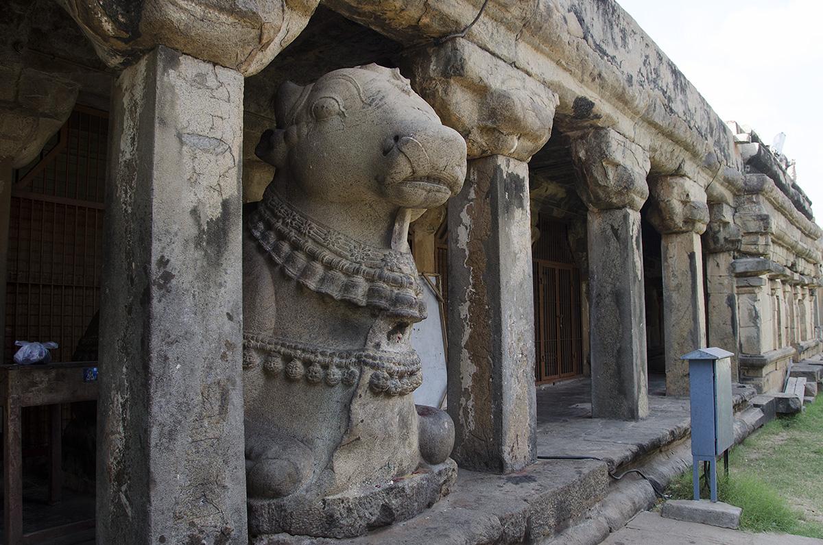 Original Nandi - Brihadeeswarar Temple, Tanjavur