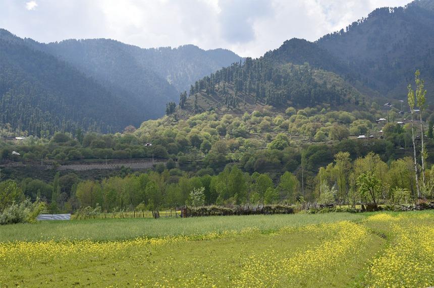 Pahalgam, Kashmir