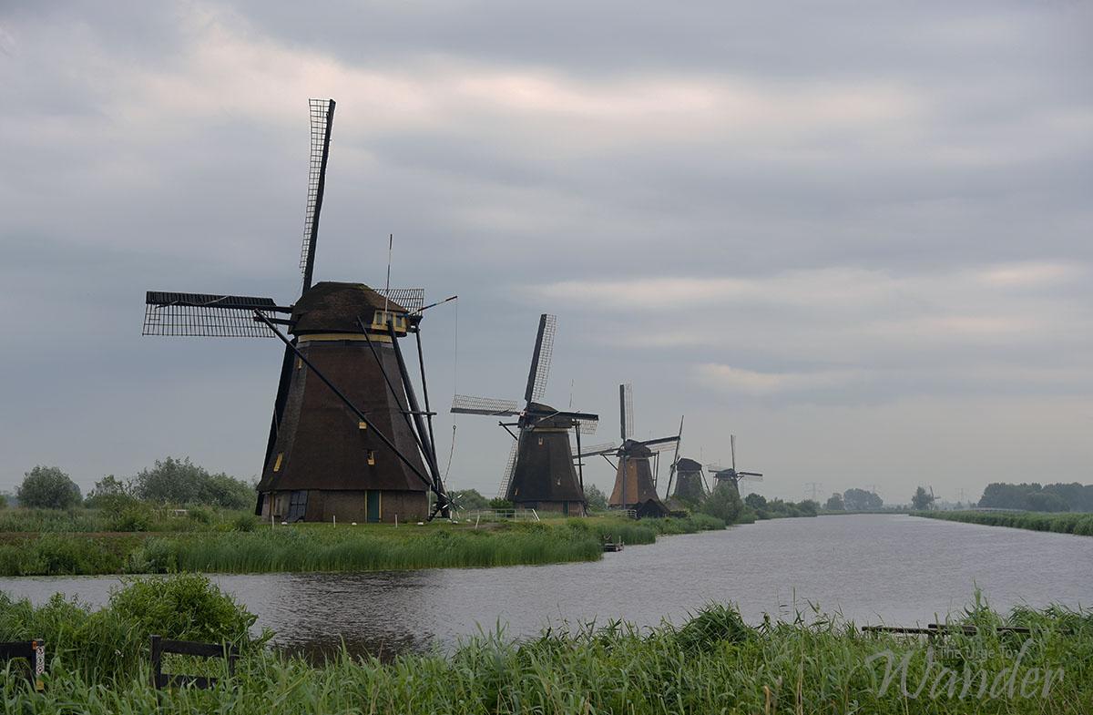 Windmills in Kinderdijk, Rotterdam.