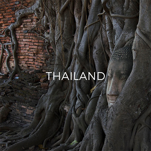 Buddha head amid tree roots in Ayutthaya - Link to Thailand Guide