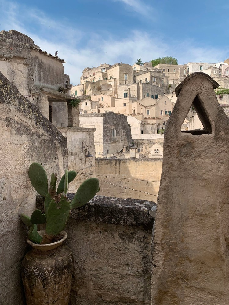 Vertical framed view of the Sassi of Matera with a cactus in a pot in the foreground.