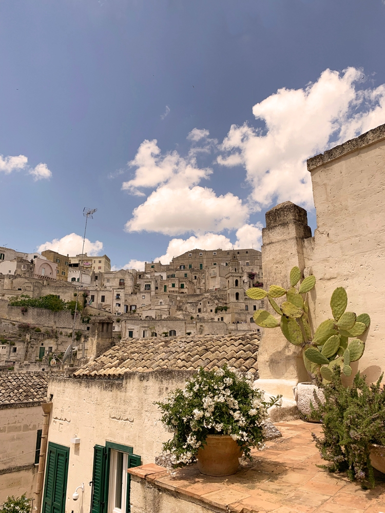 Cacti and white flowering pot on a ledge with the Sassi of Matera in the background.
